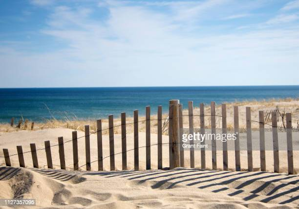 sand fence at beach. - massachusetts stock pictures, royalty-free photos & images