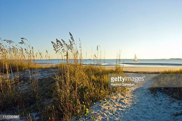 a sand pathway leads to the beach with a sailboat in the background on hilton head island, sc. - template_talk:south_carolina stock pictures, royalty-free photos & images