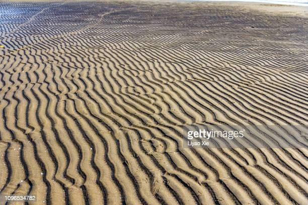 sand patterns on the beach - liyao xie stock pictures, royalty-free photos & images