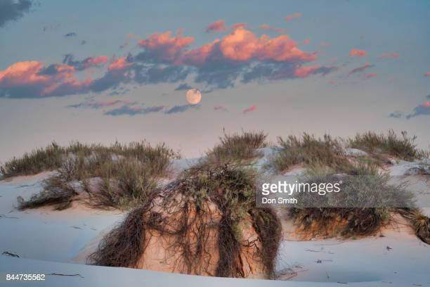 sand pedastal and rising moon - don smith foto e immagini stock