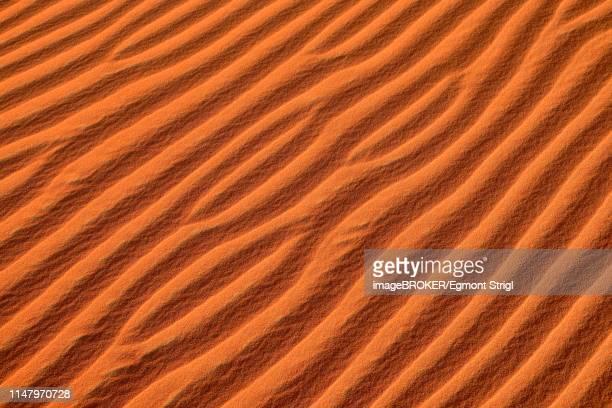 Sand ripples, structure on a sanddune, Rub al Khali desert, Empty Quarter, Dhofar, Oman, Arabia