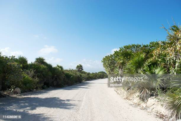 sand road at sian ka'an natural reserve in mayan riviera, mexico - sian ka'an biosphere reserve stock photos and pictures