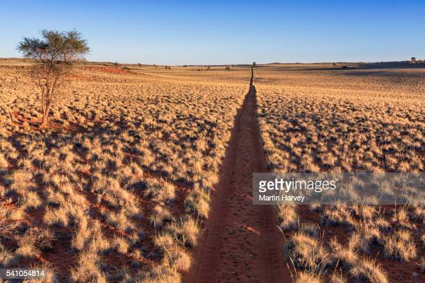 Sand road in the Namib-Naukluft Park, Namibia