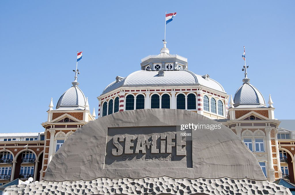 Sand Sculpture at the beach of Scheveningen : Stock Photo