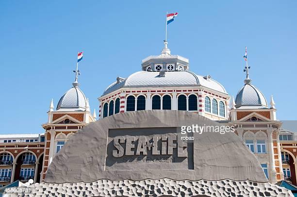 Sand Sculpture at the beach of Scheveningen