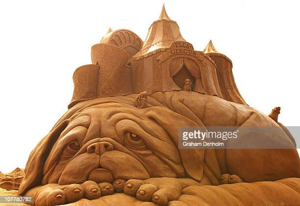 A sand sculpture entitled Flea Circus carved by Susanne Ruseler from the Netherlands is seen at the Creepy Crawlies Sandsculpting Exhibition on the...