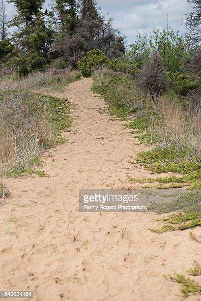 Sand trail to Devils Punch Bowl