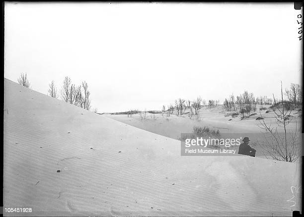 Sand trees man sitting at right the Indiana Dunes Indiana August 1 1917