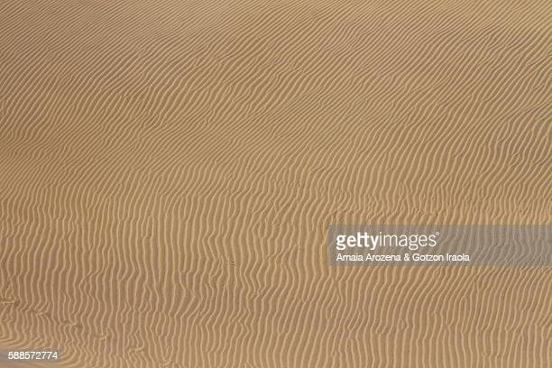 Sand waves on the dunes of Maspalomas in Grand Canary island, Spain