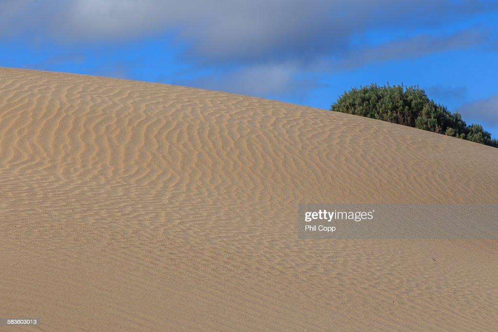 Sand waves : Stock Photo