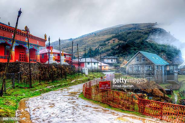 sandakphu-phalut & singalila trek - sikkim stock pictures, royalty-free photos & images