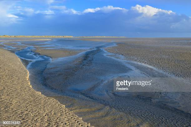 Sandbank with water receding at low tide, St. Peter-Ording, Schleswig-Holstein Wadden Sea National Park, North Frisia, Schleswig-Holstein, Germany