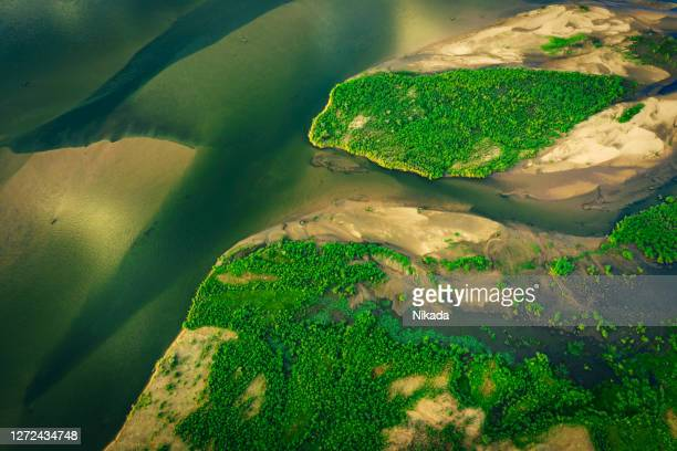 sandbars in river of lower zambezi area in zambia, africa - zambezi river stock pictures, royalty-free photos & images