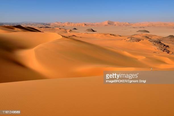 sanddunes of oued in djerane, tadrart, tassili n'ajjer national park, sahara, algeria - アルジェリア ストックフォトと画像