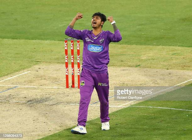 Sandeep Lamichhane of the Hurricanes celebrates taking the wicket of Moises Henriques of the Sydney Sixers during the Big Bash League match between...