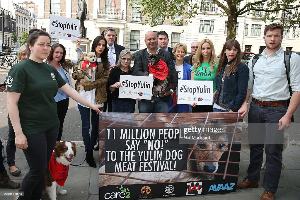 Sandi Thom, Lucy Watson, Carrie Fisher, Marc Abraham, Jenny Seagrove, Anneka Svenska and Victoria Stilwell attend a photocall as campaigners submit an 11 million signature petition calling for an end to China's Yulin dog meat festival at Chinese Embassy London on June 7, 2016 in London, England.