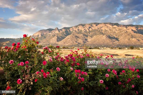 sandia mountains - new mexico stock pictures, royalty-free photos & images