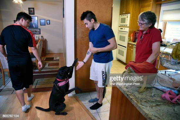 Sandra Bursch watches grandson Gage get a highfive from 'Shyla' a 3year0ld labrador as his brother Mason watches her house in the Tujunga section of...