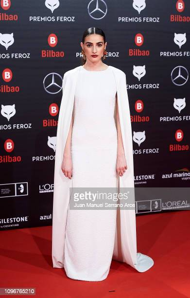 Sandra Escacena on the red carpet during the Feroz Awards 2019 on January 19, 2019 in Bilbao, Spain.
