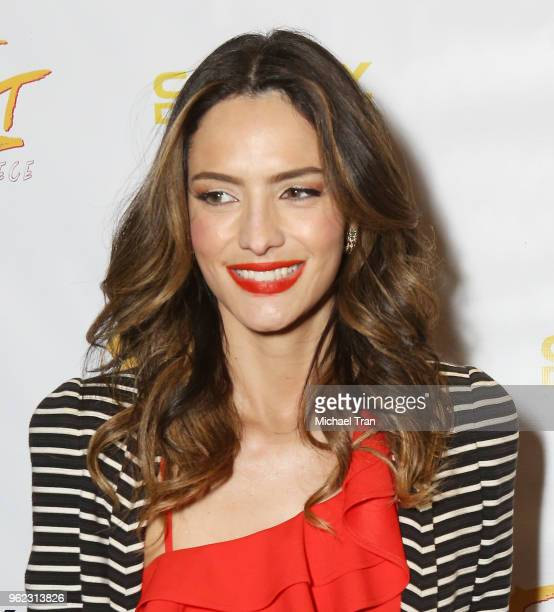Sandra Vergara attends the Los Angeles premiere of Comedy Dynamics' The Fury Of The Fist And The Golden Fleece held at Laemmle's Music Hall 3 on May...