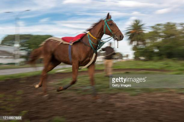 Sandro trains his horse on the outskirts of the racecourse before the race during competition day as Uruguay slowly returns to normal due to...