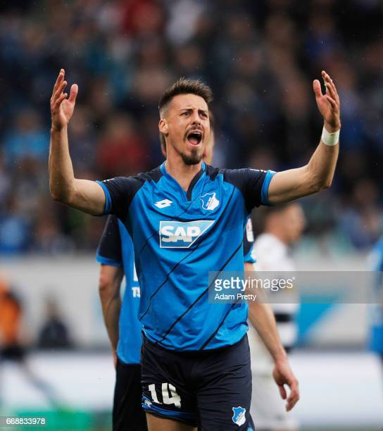 Sandro Wagner of 1899 Hoffenheim pumps up the crowd after a goal during the Bundesliga match between TSG 1899 Hoffenheim and Borussia...