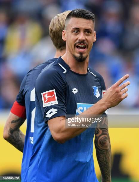 Sandro Wagner of Hoffenheim gestures during the Bundesliga match between TSG 1899 Hoffenheim and Hertha BSC at Wirsol RheinNeckarArena on September...
