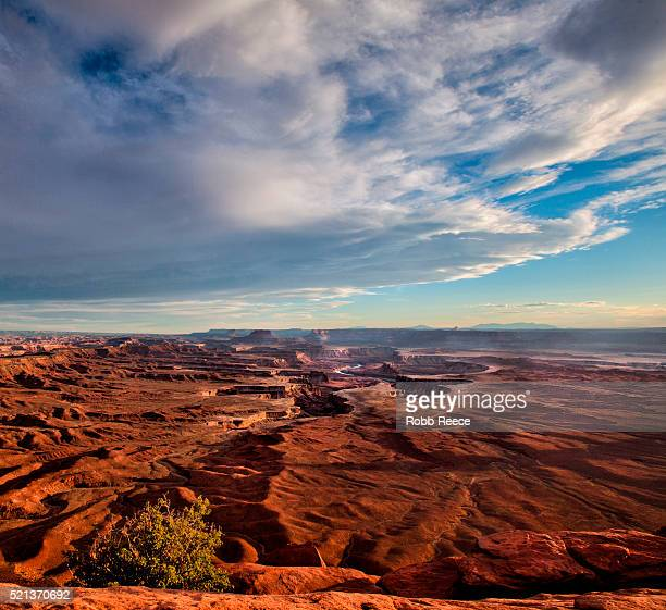 sandstone canyons and the white rim in canyonlands national park, utah, u.s.a - robb reece 個照片及圖片檔