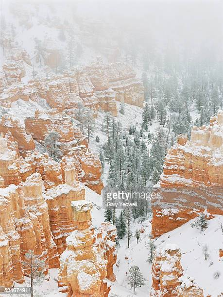 sandstone formations of bryce canyon in snow - yeowell stock photos and pictures