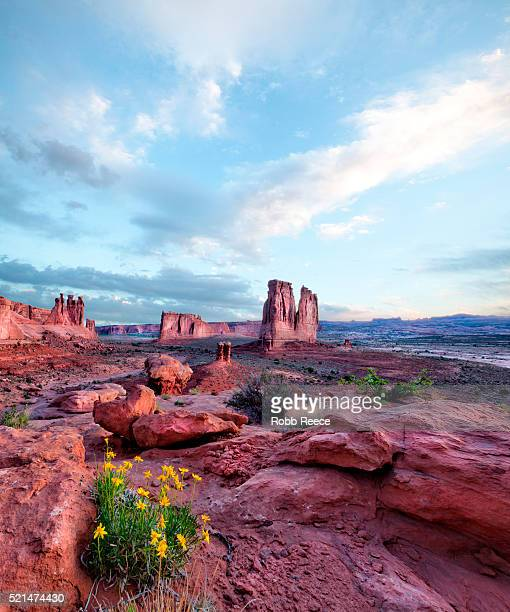 sandstone rock formations at sunrise in arches national park, utah, u.s.a - robb reece 個照片及圖片檔