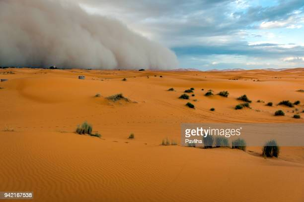 sandstorm approaching merzouga settlement,in erg chebbi desert morocco, north africa - dust storm stock pictures, royalty-free photos & images