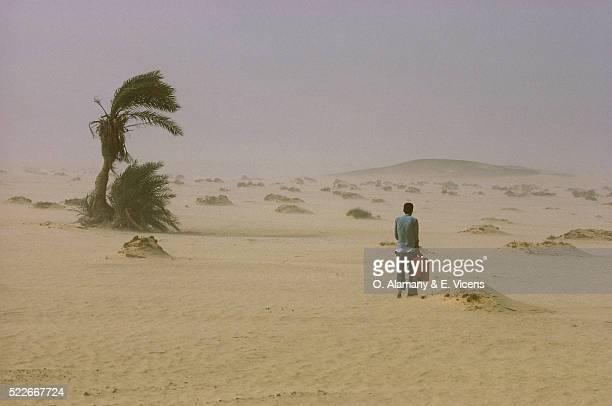 Sandstorm in Western Desert