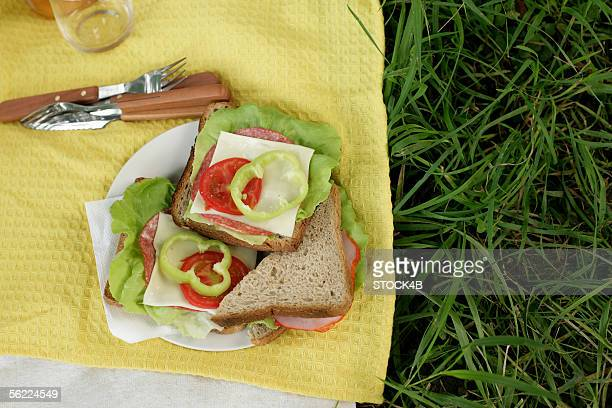 Sandwiches for a picnic on grass