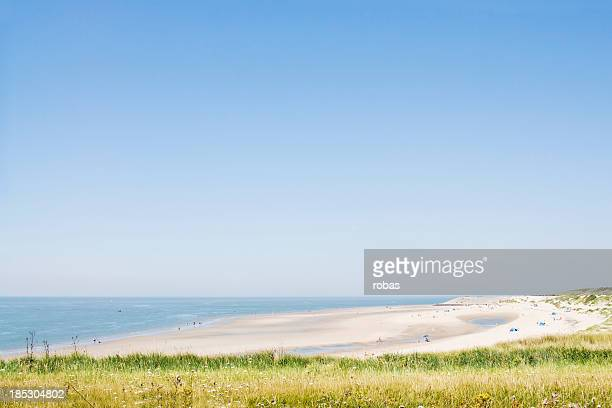 Sandy beach and dunes at Zeeland, The Netherlands