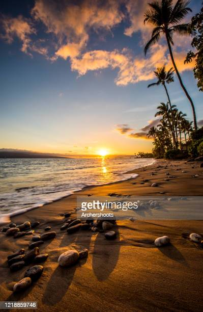 sandy beach and palm trees with lahaina sunset - lahaina stock pictures, royalty-free photos & images