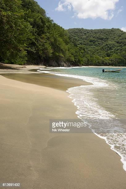sandy beach at cotton bay on the western coast of tropical island of tobago in trinidad and tobago, caribbean - paisajes de trinidad tobago fotografías e imágenes de stock