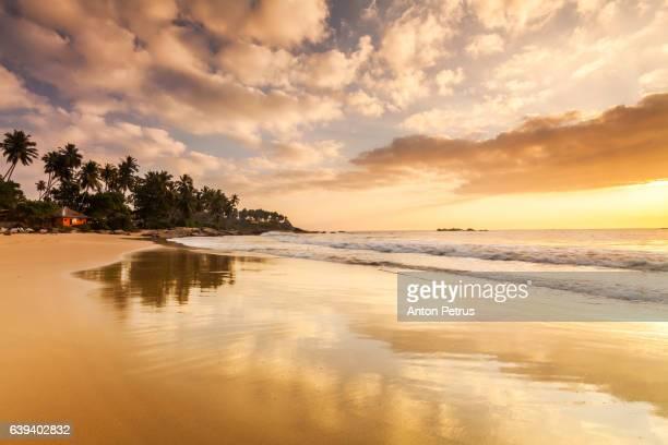 sandy beach at dawn. sri lanka - anton petrus panorama of beautiful sunrise stock pictures, royalty-free photos & images