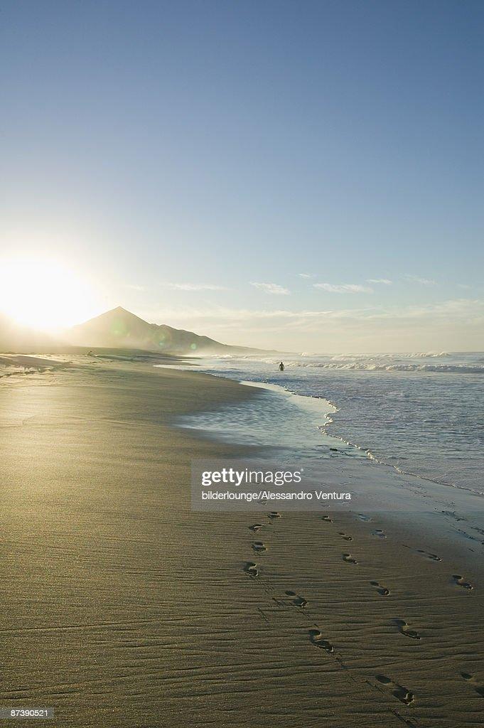 sandy beach at sunset : ストックフォト
