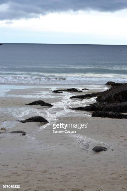 sandy beach, bar harbor, maine - tammy bar stock pictures, royalty-free photos & images