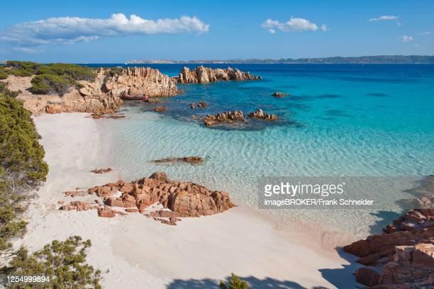 sandy beach beach, granite rocks, budelli bay, budelli island nature reserve, maddalena archipelago national park, sardinia, italy - nature reserve foto e immagini stock