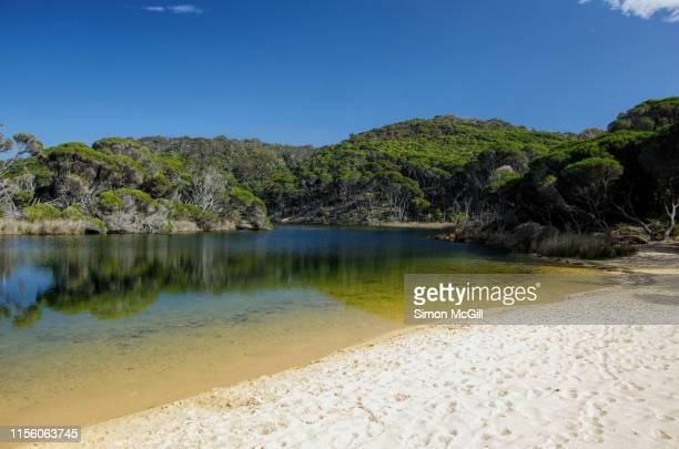 sandy beach creek, bournda national park, new south wales, australia - estuary stock pictures, royalty-free photos & images