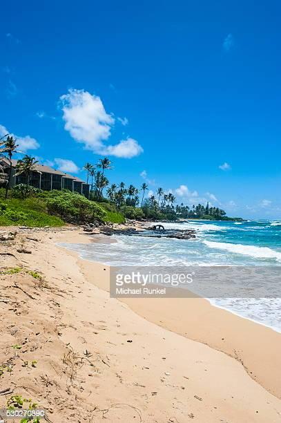 sandy beach on kapaa beach park on the island of kauai, hawaii, united states of america, pacific - kapaa beach park ストックフォトと画像