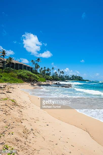Sandy beach on Kapaa Beach Park on the island of Kauai, Hawaii, United States of America, Pacific
