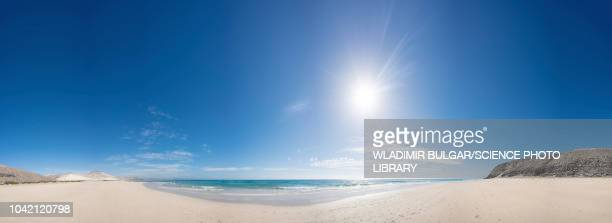 sandy beach on sunny day - ensolarado imagens e fotografias de stock