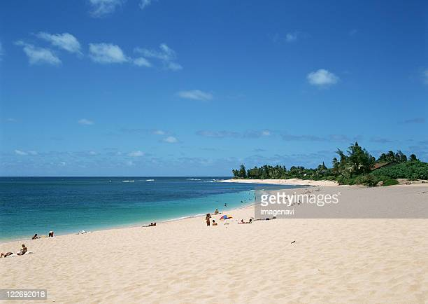 sandy beach - image title stock pictures, royalty-free photos & images