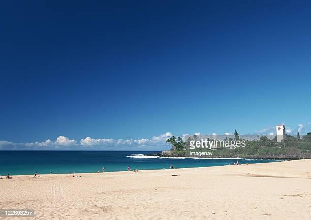 sandy beach - waimea bay - fotografias e filmes do acervo