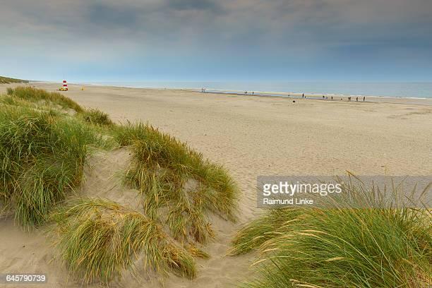 sandy beach, - jutland stock photos and pictures