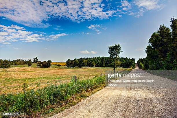 sandy beach road - dustin abbott stock pictures, royalty-free photos & images
