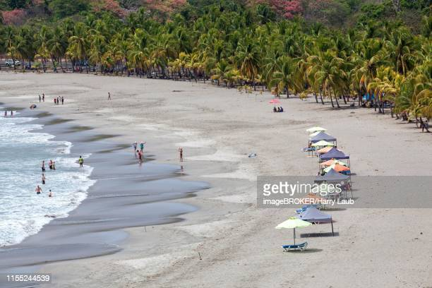 sandy beach with palm trees, playa carrillo, samara, nicoya peninsula, guanacaste province, costa rica - playa carrillo fotografías e imágenes de stock