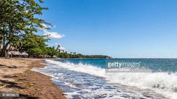 sandy beach with trees, dauin, negros oriental, philippines - negros oriental stock pictures, royalty-free photos & images